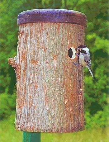 Chickadee Log Nest Box